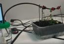 Semillero controlado por Arduino